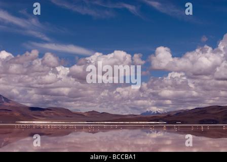Laguna Colorada (rote Lagune) innerhalb von Eduardo Avaroa Anden Fauna Nationalreservat in Bolivien - Stockfoto