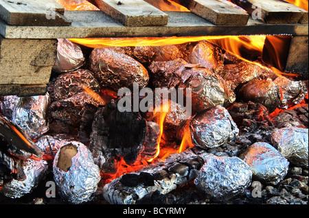 Israel Jordanien Tal Kibbuz Ashdot Yaacov Lag Ba Omer Feier mit einem Lagerfeuer Kartoffeln in Folie im Feuer kochen - Stockfoto