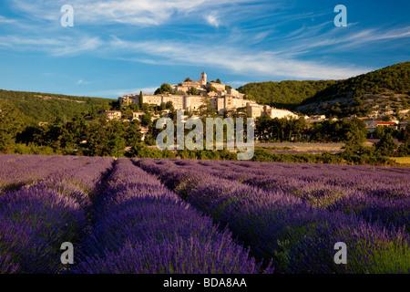Lavendel Feld mit Hügel Stadt von Banon im Departement Vaucluse, Provence Frankreich - Stockfoto