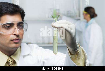 Wissenschaftler halten Pflanzen im Reagenzglas - Stockfoto