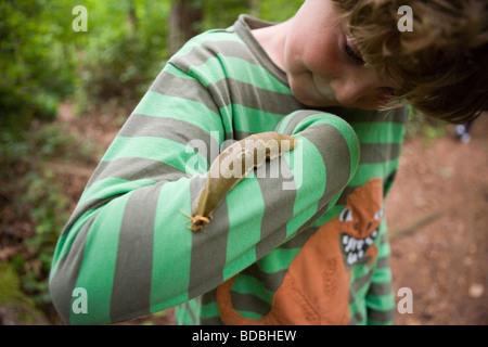riesige Banane Schnecke kroch ein Junge Arm in einem Regenwald und Vashon Island, Washington, USA - Stockfoto