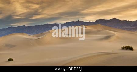 Fotograf, Wandern in Distanz flach Mesquite Dünen Amargosa Strecke hinter Sonnenaufgang in Death Valley, Kalifornien, - Stockfoto