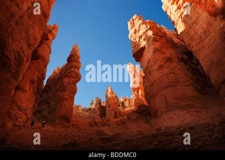 Navajo Loop Trail in Bryce Canyon National Park in Utah USA - Stockfoto