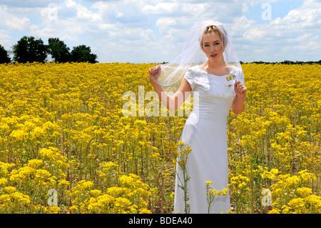 Schöne Braut in einem Feld von gelben Blumen - Stockfoto
