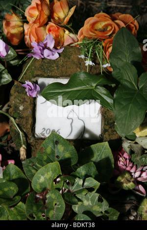 Katze-Grabstein im protestantischen Friedhof in der Nähe von Piramide, Rom - Stockfoto