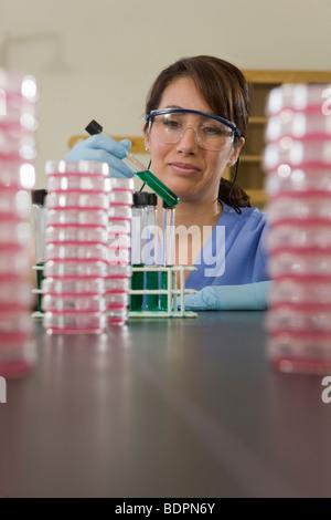 Stapel von Petrischalen mit einer Laborantin im Hintergrund - Stockfoto