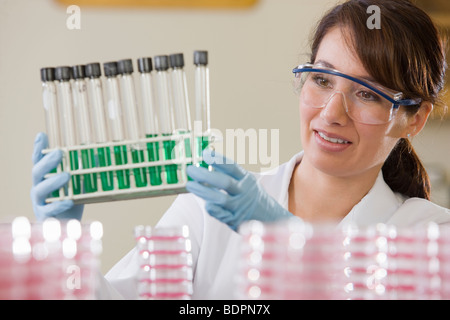 Labortechniker Analyse von Proben im Reagenzglas - Stockfoto