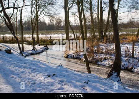 Fluss, der durch Christ Church Meadow im Winter, Oxford - Stockfoto