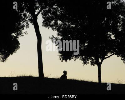 Silhouette der Person zu Fuß durch Wald Abend - Stockfoto
