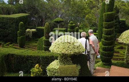 Ein älteres Ehepaar ein Formschnitt Anzeige im Botanischen Garten von Funchal auf Madeira. - Stockfoto