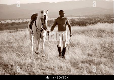 Schwarzen und weißen Pferd - Stockfoto