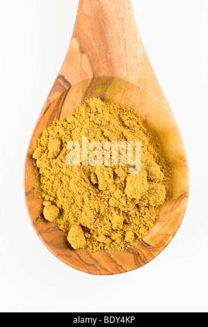 Madras curry Gewürzmischung auf einem Löffel aus Olivenholz - Stockfoto