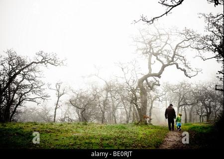 Erwachsene und Kinder Fuß durch unheimliche Nebel gehüllt park - Stockfoto