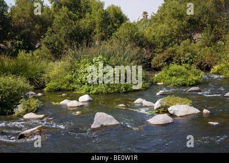 Glendale Narrows entlang des Los Angeles River. Los Angeles, Kalifornien, USA - Stockfoto