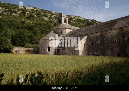 Zisterzienser Kloster Senanque in der Nähe von Gordes, Provence, Frankreich - Stockfoto