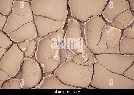 Fluss Bett nach einer langen Dürre, Detail - Stockfoto