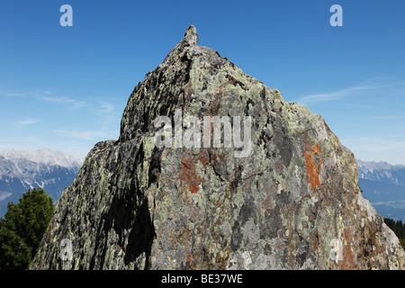 Rock mit Flechten, Mt. Patscherkofel, Tuxer Alpen, Tirol, Österreich, Europa - Stockfoto
