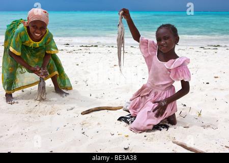 Kinder schlagen eine Krake mit Stöcken zu machen, essbar, Jambiani, Sansibar, Tansania, Afrika - Stockfoto