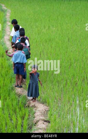 Kleine Inderin winken auf der Rückseite eine Reihe von indischen Schülerinnen und Schüler zu Fuß auf einem Reisfeld. - Stockfoto