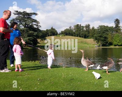 Familie mit Tochter am Zügel schaut Gänse in Claremont Park, Esher, Surrey. VEREINIGTES KÖNIGREICH. - Stockfoto