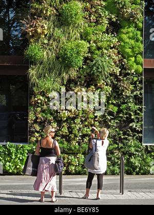 Paris Frankreich, pflanzlichen vertikalen Garten grüne Wand Museum ...