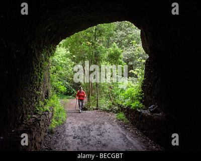 Frau zu Fuß durch einen Tunnel in einem Laurisilva, El Canal y Los Tilos-Biosphären-Reservat, La Palma, Kanarische - Stockfoto