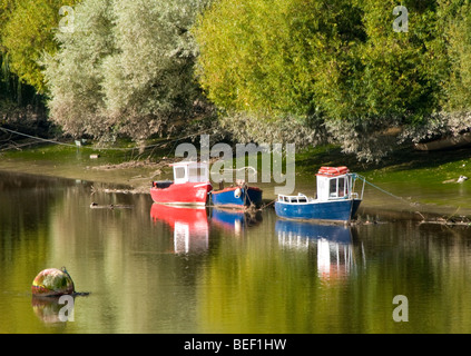 Kleine Fischerboote vor Anker am River Dee, Chester, Cheshire, England, UK - Stockfoto
