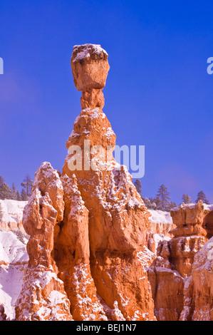 Morgenlicht und frischen Pulverschnee auf Thors Hammer, Bryce-Canyon-Nationalpark, Utah - Stockfoto