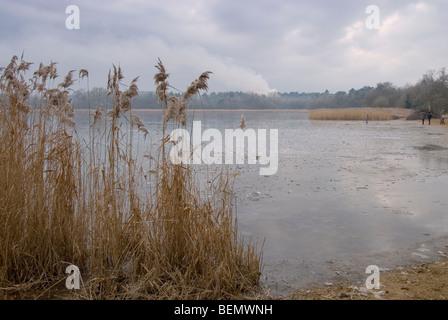 Frensham Teiche im Winter mit dem See zugefroren und Menschen am See - Stockfoto