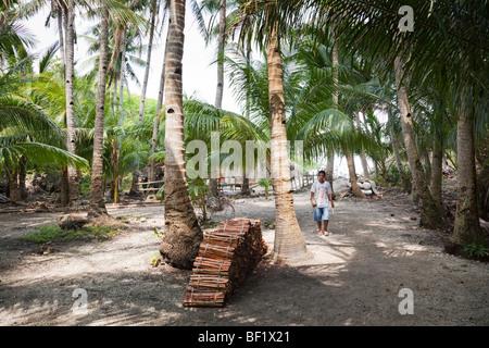 Philippinischen Mann zu Fuß durch einen Palmenhain in Sinapsapan Dorf Guimaras Island Philippinen - Stockfoto