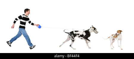Mann seinen Dogge Hund, 4 Jahre alt, vor einem weißen Hintergrund, Studio gedreht - Stockfoto