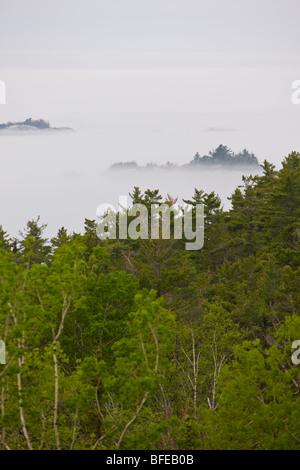 Lake Superior umhüllt von Nebel in der Nähe von Lizard Island, Lake Superior Provincial Park, Ontario, Kanada - Stockfoto