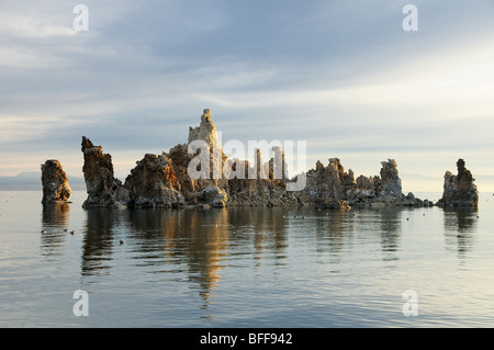 Tuffstein Türme an der South Tufa, Mono Lake, östlichen Sierras, Kalifornien, USA - Sunrise - Stockfoto