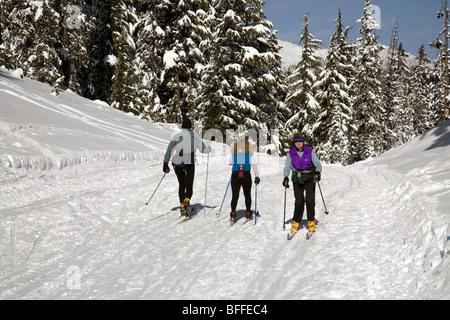 Überqueren Sie Land oder Langläufer auf einem präparierten Trail in der Nähe von Mount Bachelor in Oregon Cascade - Stockfoto