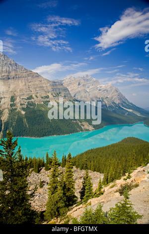 Peyto Lake angesehen vom Blick-off, Banff Nationalpark, Alberta, Kanada - Stockfoto