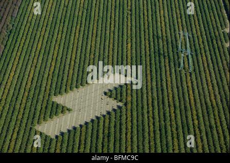Luftaufnahme über Powerlines in Central Valley in Kalifornien Ackerland - Stockfoto
