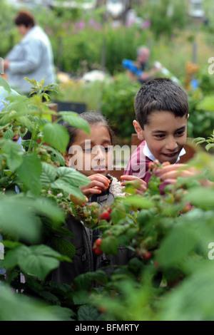 Kinder besuchen Zuteilungen von örtlichen Schulen, Bradford - Stockfoto
