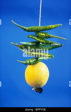 NVM 66725: Konzept; grüne Chilischoten Zitrone Holzkohle im Thread hängen vor blauem Hintergrund - Stockfoto