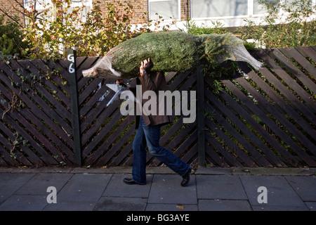 ein Mann, der einen Weihnachtsbaum an Columbia Road Flower Market in London gekauft hat - Stockfoto