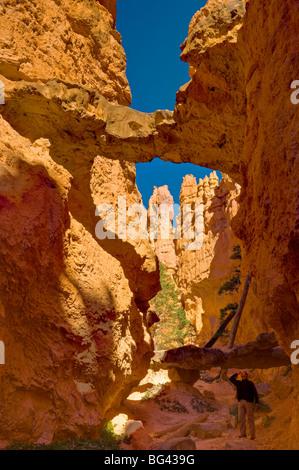 USA, Utah, Bryce-Canyon-Nationalpark, Navajo Loop Trail - Stockfoto