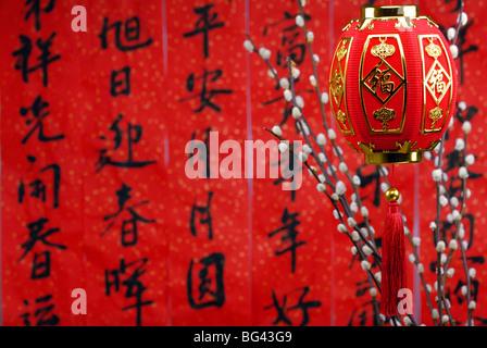 Das chinesische Neujahr mit Blüte und Laterne. Traditionelle ...