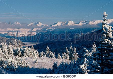 Alaska. Kenai-Halbinsel. Turnagain Pass im Winter. - Stockfoto