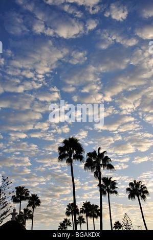 Wolken im Himmel bei Sonnenuntergang, Playa del Ingles, San Bartolome de Tirajana Gemeinde, Gran Canaria, Kanarische - Stockfoto