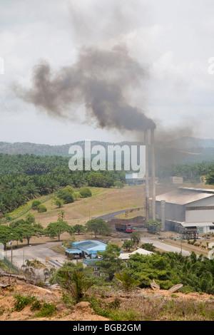Die Sindora Palmöl-Mühle von Sindora Palmöl-Plantagen umgeben. DDie Mühle und Plantage sind grün zertifiziert. - Stockfoto