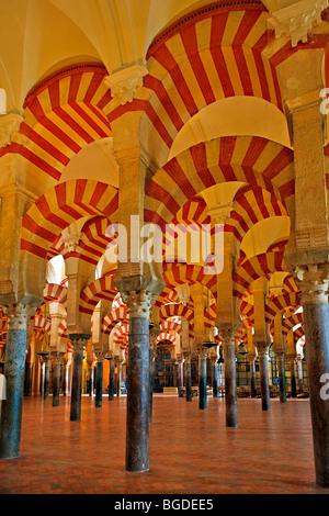 Schiffen der Mezquita (-Moschee-Kathedrale), Córdoba, UNESCO-Weltkulturerbe, Provinz Córdoba, Andalusien (Andalucia - Stockfoto