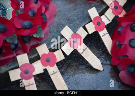 Symbolische Mohn am Kriegerdenkmal in London, England, UK. - Stockfoto