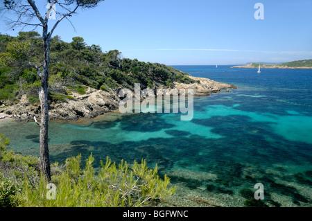 Bay oder am Port Cros Island National Park, & Mittelmeer, Îles d'Hyères, Var, Côte d ' Azur oder Côte d ' Azur, - Stockfoto