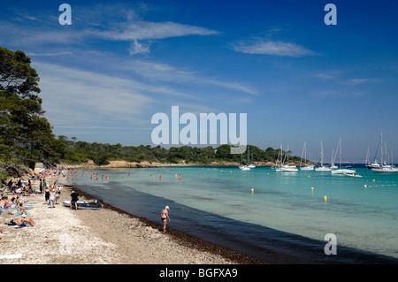 Sandy Beach & Bucht von Plage d ' Argent, Île de Porquerolles oder Insel, Îles d'Hyères, Var, Côte d ' Azur, Côte - Stockfoto