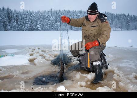 Ältere Mann Überprüfung Fischernetze im Winter. Fang von kleinen Hecht (Esox Lucius). Finnland - Stockfoto