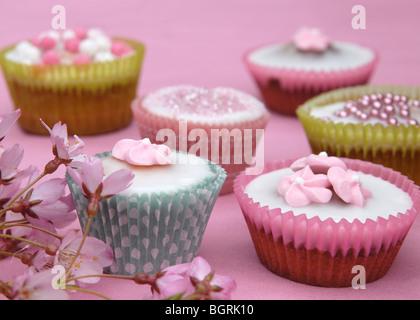 Nahaufnahme von sechs ziemlich dekorierten Cupcakes auf einem rosa Hintergrund mit Kirschblüten im Vordergrund. - Stockfoto